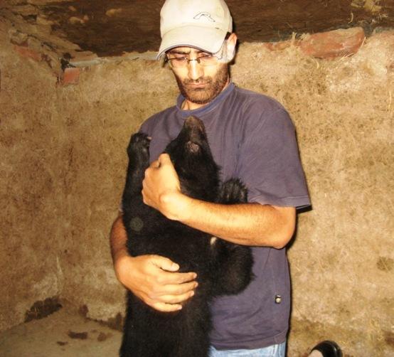bear hugging a vet